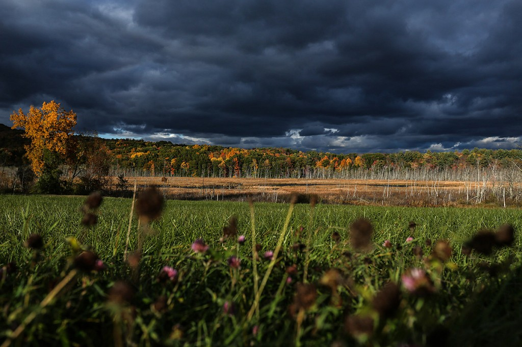 Autumn colors on the east coast with stormy skies