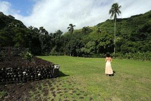 Tahiti's Lush Interioir