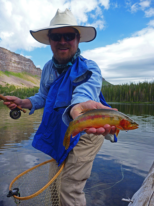 Carper with a stunning golden trout