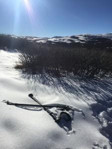 Mountainsmith trekking poles in powdery snow with a mountain range background