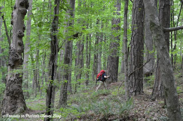 Liz Wilson from Peanuts or Pretzels hikes with her Mountainsmith Juniper 55 through the woods