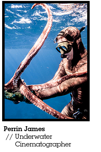 perrin james underwater with an octopus