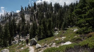 Hiking through Heavenly's Killebrew Canyon