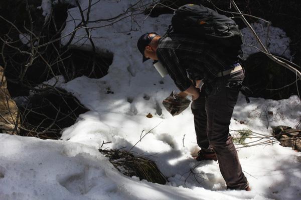 Man picks up dog poop on trail