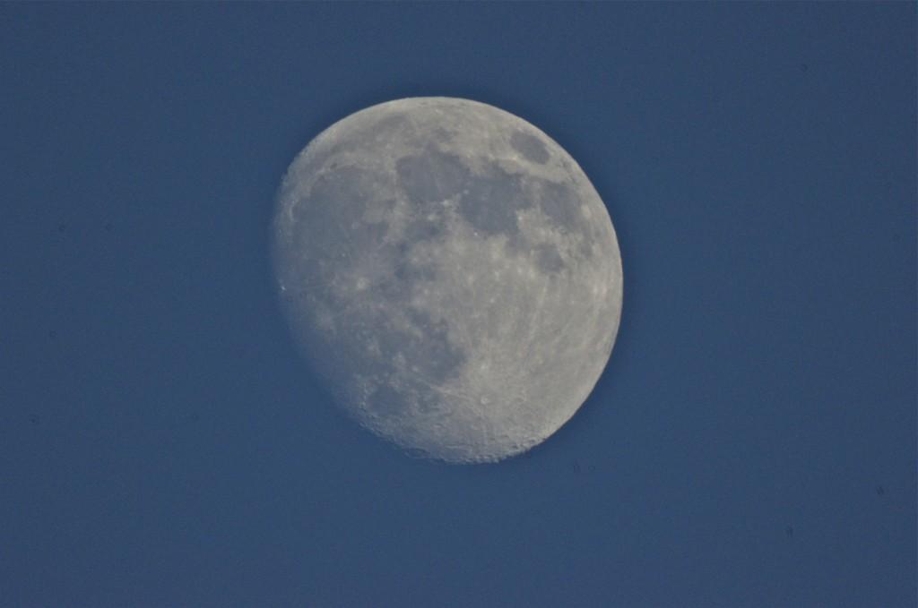 Waxing Moon in Colorado