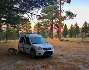 sunset campsite in the blm land with kuna the little wolf and the tiny van
